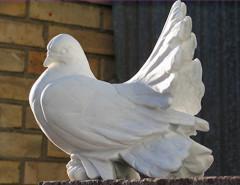 Что означает фигурка голубя на надгробном памятнике