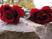 Особенности траурной флористики на похороны мужчине
