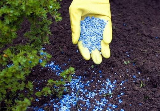 химикаты от травы