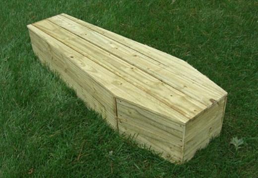 Гроб на траве