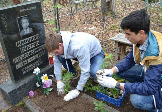 парни садят цветы