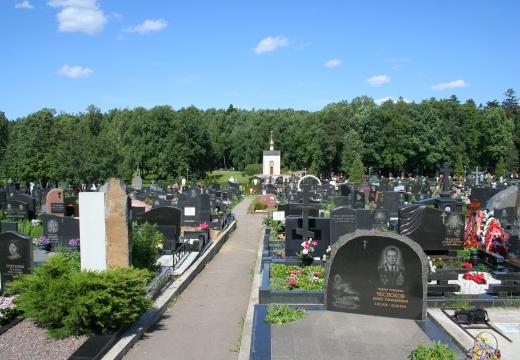 аллея на кладбище