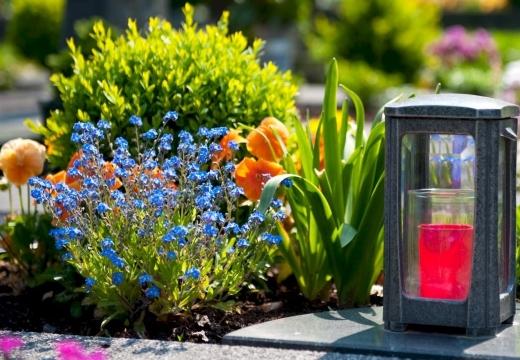 Могильные цветы и лампада