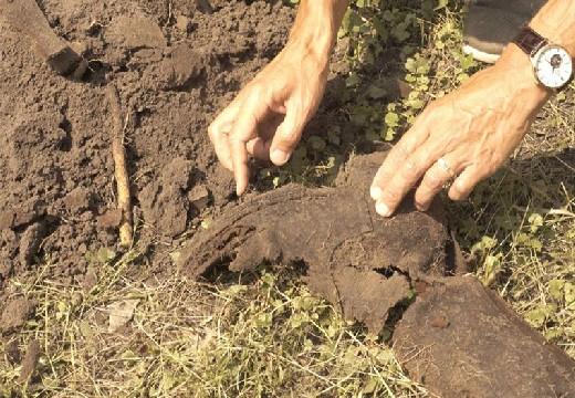 найдено захороненное тело
