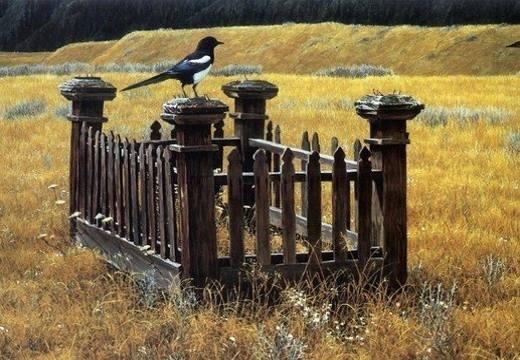 Птица на могиле