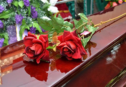две красных розы