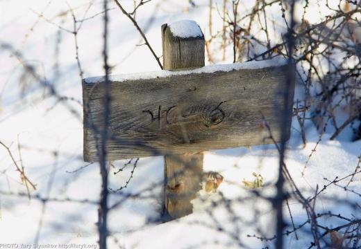 табличка на тюремном кладбище