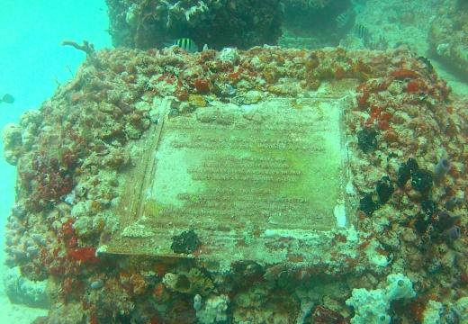 захоронение в рифе