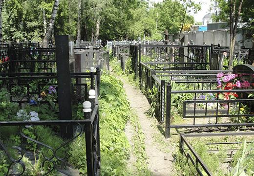 Приснились могилы