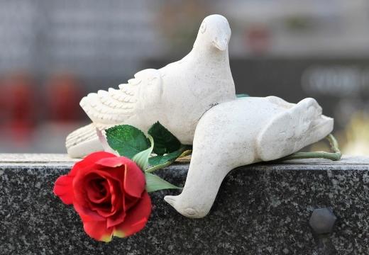 голуби на надгробном памятнике