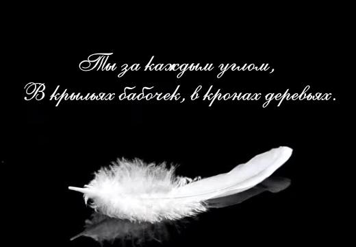 эпитафия цитата из песни