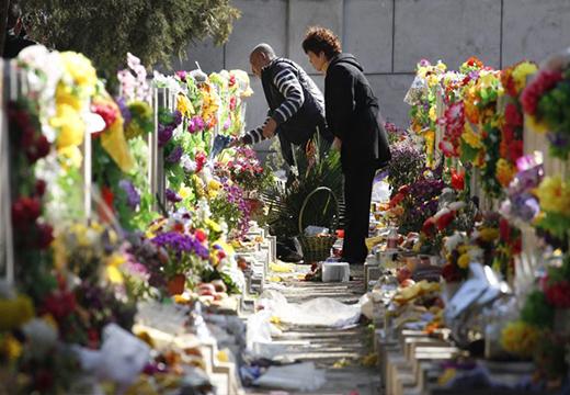 Цветы на могилах